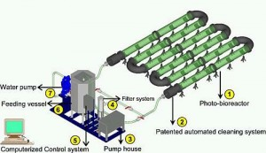 photobioreactor-technology